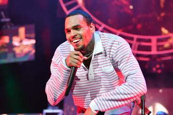 Chris Brown's Yard Sale Almost Got Shut Down By Someone Who Filed Complaint: Report