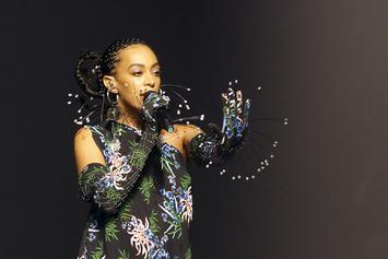 "Solange Knowles Gives Artsy Nine-Minute Medley Of ""When I Get Home"""