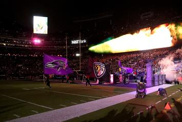 Fan Dies During Ravens-Titans Game Saturday
