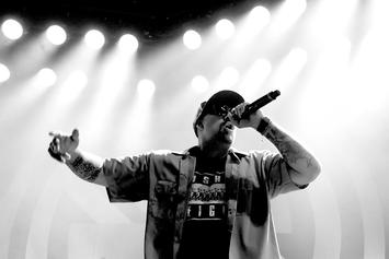 B-Real Thinks Live Music Is Done In 2020