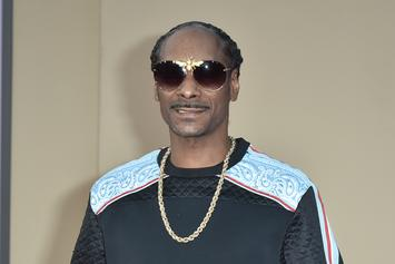 Snoop Dogg Wants In On The Floyd Mayweather-Logan Paul Fight
