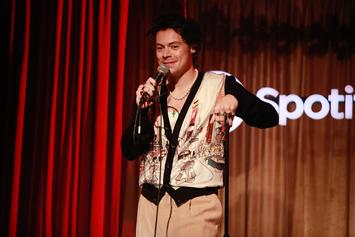 Fox News Host Trolled On Twitter After Criticizing Harry Styles' Wardrobe