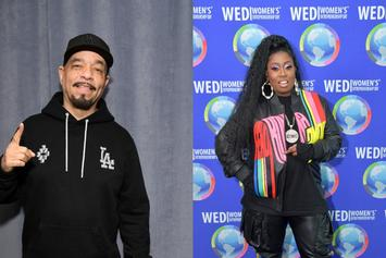 Missy Elliott & Ice-T Praise David Bowie For Checking MTV Over Discriminatory Coverage