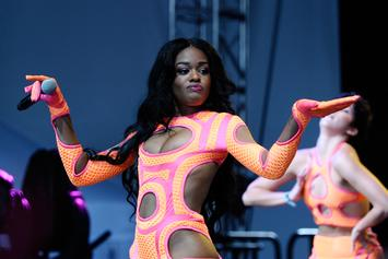 "Azealia Banks Clarifies Boiling Cat, Denies Reports She Was ""Cooking"" Pet"
