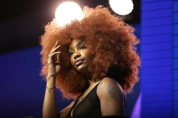 SZA Fan Accuses Singer Of Lying About Personal Details, Pulls Receipts
