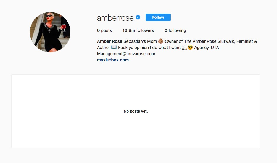 Amber Rose Deletes All Instagram Posts, Unfollows Everyone