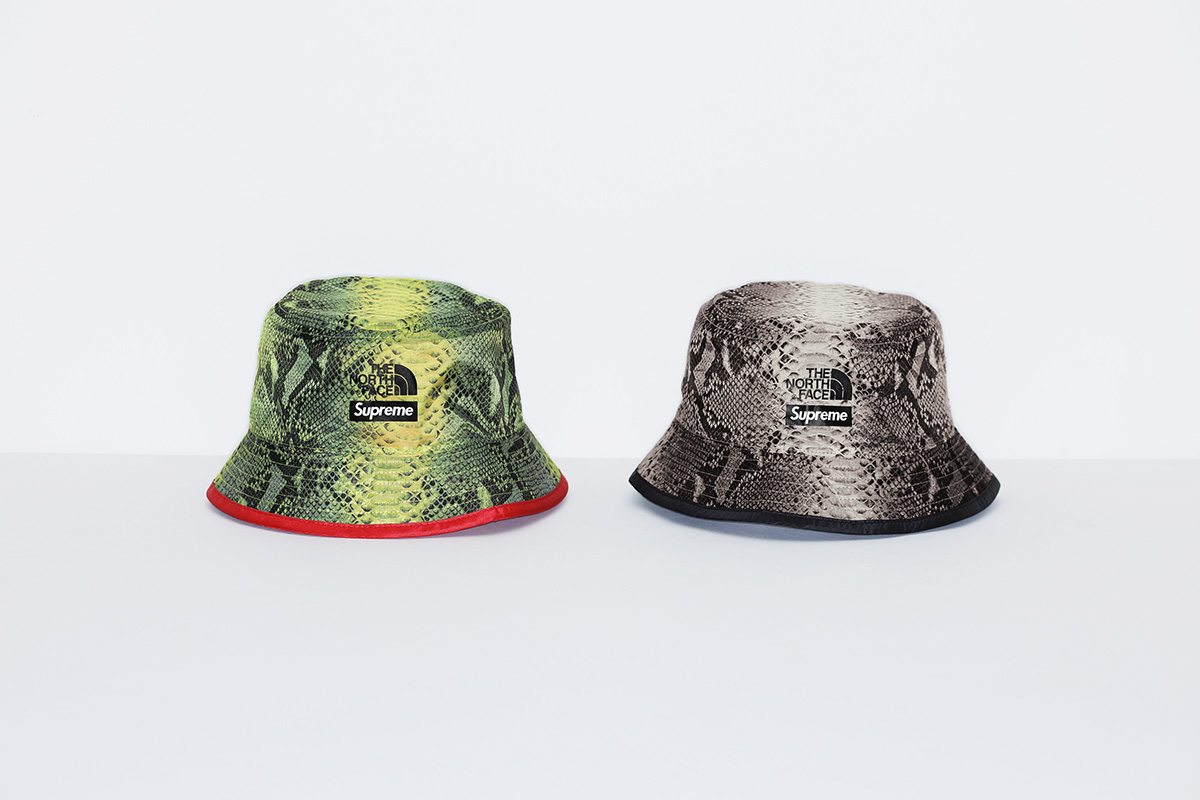 Supreme & The North Face's New Collaboration Includes A Tent & Snakeskin Apparel