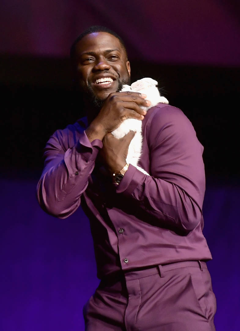 Kevin Hart's Car Crash 911 Call Surfaces