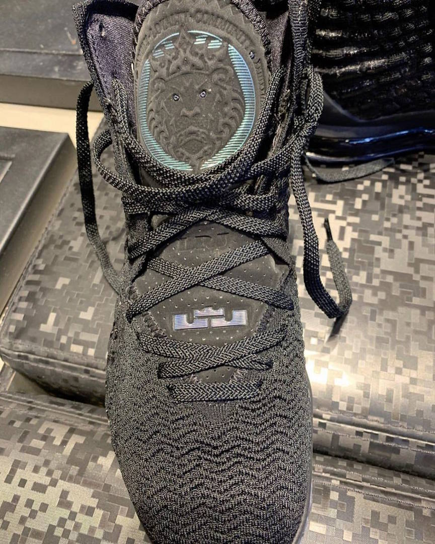 """LeBron James' Nike LeBron 17 Releasing In A """"Currency"""" Colorway: First Look"""