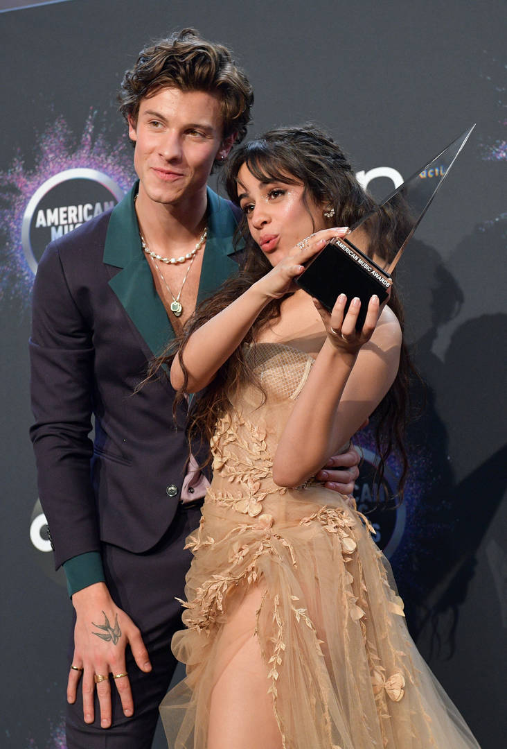 "Camila Cabello Says Dating Shawn Mendes Has ""Desensitized"" Her To Public Opinion"