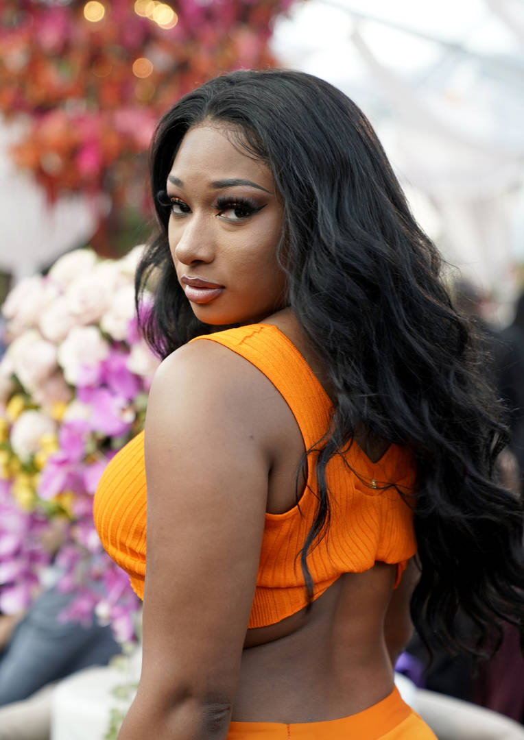 Megan Thee Stallion #FREETHEESTALLION label beef 1501